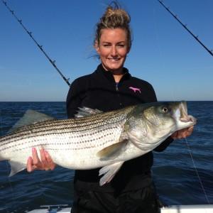 Striper Cup fish