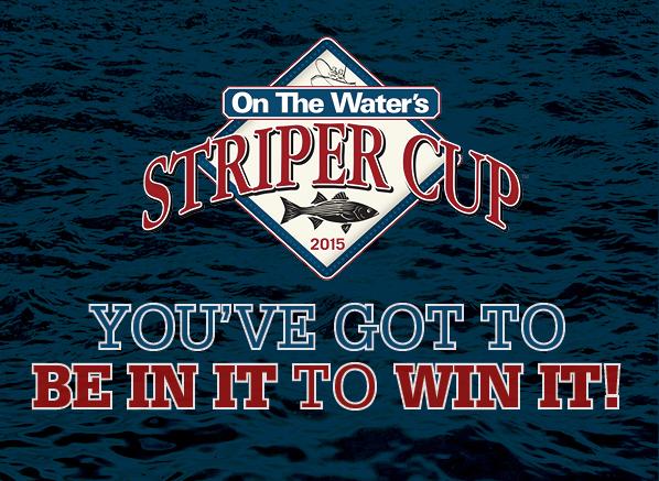 Striper Cup C+R ad 2015f
