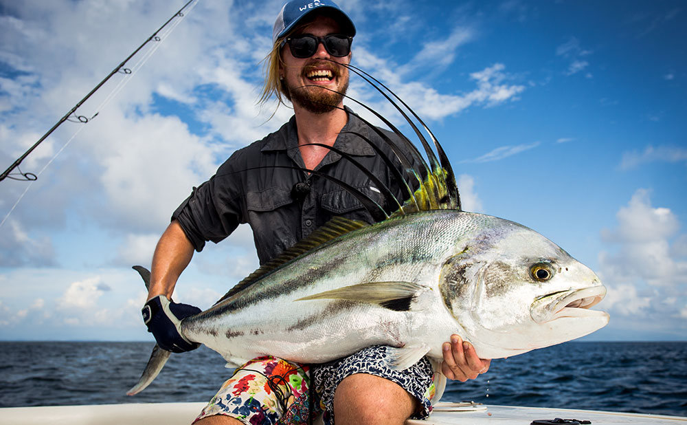 roosterfish-wp