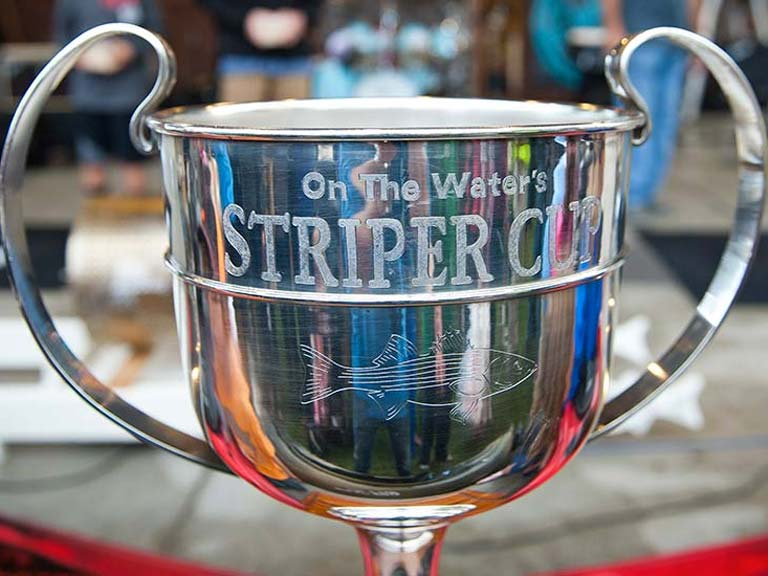 Striper Cup welcome image