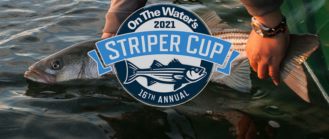Striper Cup slide one